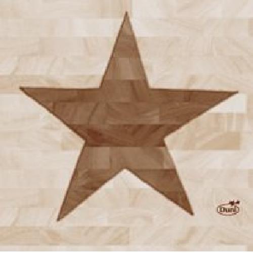 """50 Duni Zelltuch Servietten """"Wood Star"""" 24 x 24 cm"""
