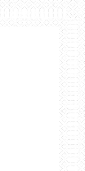 250 Duni Zelltuch Servietten weiß 2 lagig 1/8 Falz 33 x 33 cm